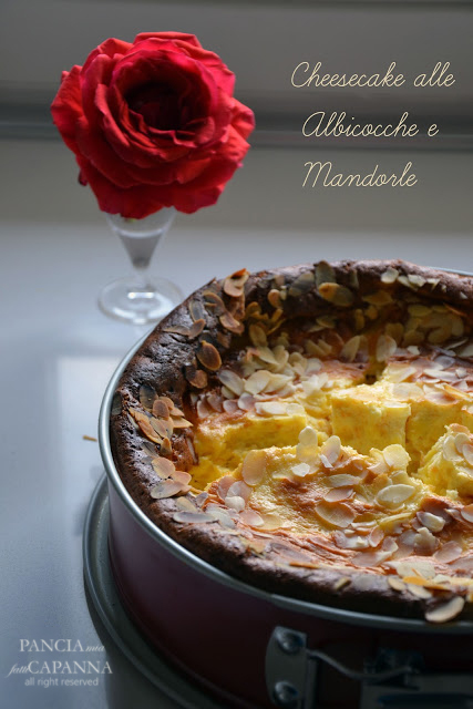 Cheesecake alle albicocche e mandorle