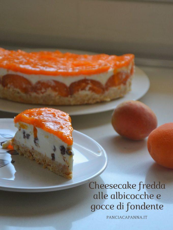 Cheesecake fredda alle albicocche e gocce di fondente